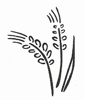 California Association of Wheat Growers CAWG logo